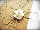 Romantyczne zaproszenia eko z kwiatem (8)